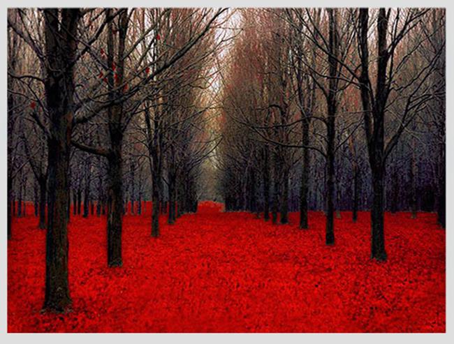 """Mê mẩn ngắm những mùa cây thay lá """"long lanh"""" nhất thế giới 9-1539422949-width650height493"""