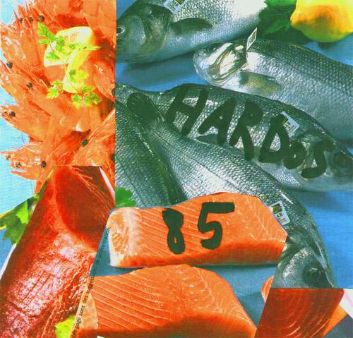 1-2-3... en Images ! - Page 4 Hardos85-3