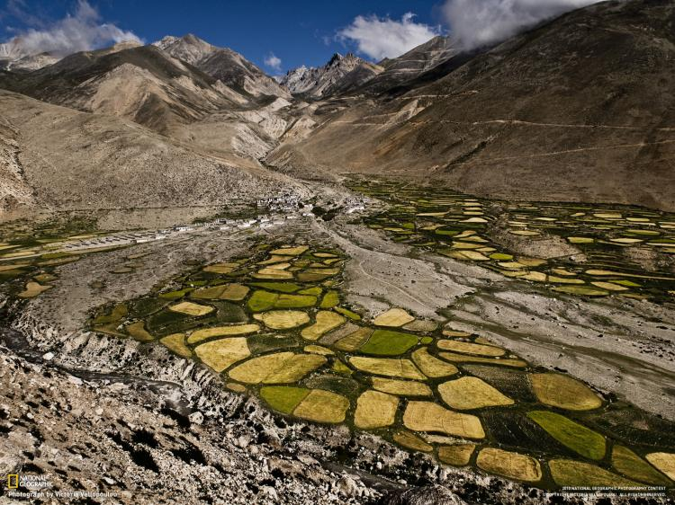 ''Nacionalna geografija'' - Najfotografije - Page 3 Umetnost_National_Geographic_fotografije_21
