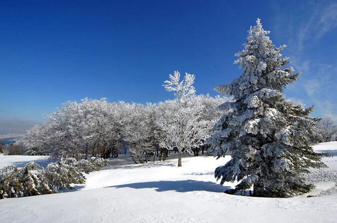 صور ساحرة للطبيعة  Winter-in-jura