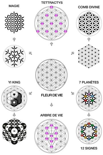 La vérité sur les extra terrestres Symbolisme-floral