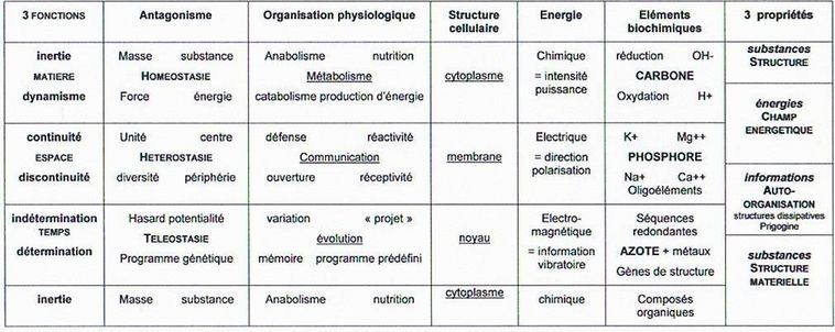 Philosophie holistique et modèle systémique 3.2_biochimie