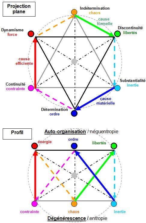 Philosophie holistique et modèle systémique SES_1