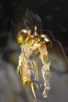 [Comentários] Saint Cloth Myth Ex - Shura de Capricórnio Abco4qXu