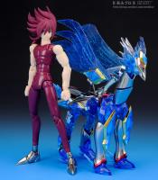 Pegasus Koga New Bronze Cloth AbdNUL5C