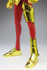 Sagittarius Seiya Gold Cloth AbeBwg19