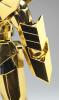 Sagittarius Gold Cloth ~Galaxian War ver.~ AbfZSiup