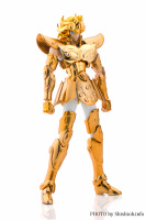 Leo Aiolia Gold Cloth ~Original Color Edition~ AbfbJe4K