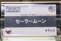 [Salon] Wonder Festival 2013 Summer AbfbWyn4