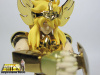 Cygnus Hyoga New Bronze Cloth ~ Power of Gold AbgsPYhj