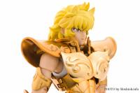 Leo Aiolia Gold Cloth ~Original Color Edition~ AbhQlvCQ