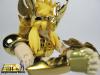Cygnus Hyoga New Bronze Cloth ~ Power of Gold AbiPLDRH