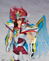 Pegasus Koga New Bronze Cloth AbjtQKuL