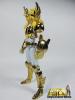 Cygnus Hyoga New Bronze Cloth ~ Power of Gold Ablk10p3