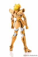Leo Aiolia Gold Cloth ~Original Color Edition~ Abnq02ah