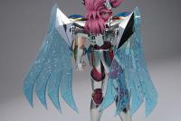 Pegasus Koga New Bronze Cloth AbrKuDxD