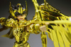 Sagittarius Seiya Gold Cloth AbsEoFVU