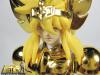 Cygnus Hyoga New Bronze Cloth ~ Power of Gold AbtIpw4W