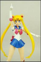 [Tamashii Nations] SH Figuarts Sailor Moon - Page 2 AbvalxTB