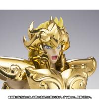 Leo Aiolia Gold Cloth ~Original Color Edition~ Abz2zAjG