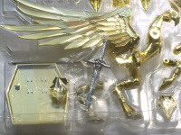 Pegasus Seiya God Cloth ~ Original Color Edition ~ Acb7sLyy