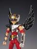 Pegasus Seiya New Bronze Cloth ~Broken Version~ AcbKaAt5