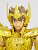 Sagittarius Seiya Gold Cloth Accm4u02