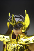 Sagittarius Seiya Gold Cloth Acd0yLJH