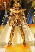 Leo Aiolia Gold Cloth ~Original Color Edition~ AchFFhpj