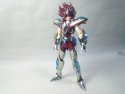 Pegasus Koga New Bronze Cloth AckFH0fF