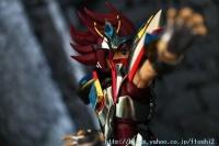 Pegasus Koga New Bronze Cloth Acl7dEEG