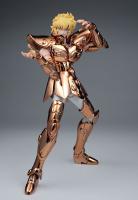 Leo Aiolia Gold Cloth ~Original Color Edition~ AcoJzlHU