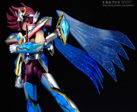 Pegasus Koga New Bronze Cloth AcpRnoLo