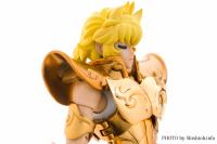 Leo Aiolia Gold Cloth ~Original Color Edition~ Acqlx6KV
