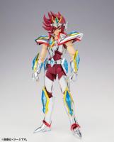 Pegasus Koga New Bronze Cloth Acqr0o7c