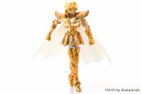 Leo Aiolia Gold Cloth ~Original Color Edition~ Acs9i4sd
