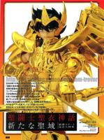 Sagittarius Seiya Gold Cloth Adbr49J1