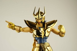 Phoenix Ikki Early Bronze Cloth ~Limited Gold Phoenix~ Adctvsj3