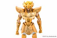 Leo Aiolia Gold Cloth ~Original Color Edition~ Add2iQno