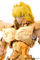 Leo Aiolia Gold Cloth ~Original Color Edition~ AdeHQX1Y