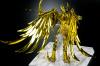 Sagittarius Seiya Gold Cloth AdexbIlK