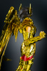 Sagittarius Seiya Gold Cloth Adjw3ECO