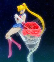 [Tamashii Nations] SH Figuarts Sailor Moon - Page 2 AdlGArtg