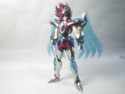 Pegasus Koga New Bronze Cloth AdsOiw3X