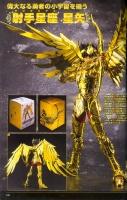 Sagittarius Seiya Gold Cloth AdsYOWVQ