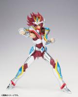 Pegasus Koga New Bronze Cloth AduGISas