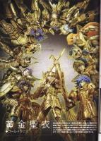 Sagittarius Aiolos Gold Cloth AdvpSItg