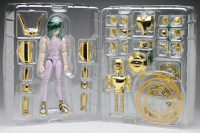 Andromeda Shun New Bronze Cloth ~ Power of Gold AdxDF2O4