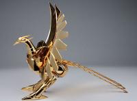 Phoenix Ikki Early Bronze Cloth ~Limited Gold Phoenix~ AdzuinLE