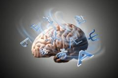 القراءة والدماغ  Brain_connectivity_233265885